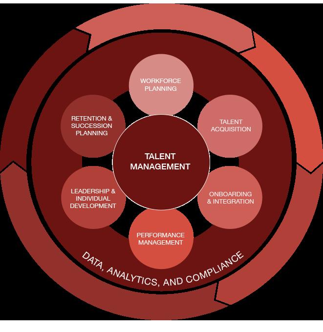 talent management graph